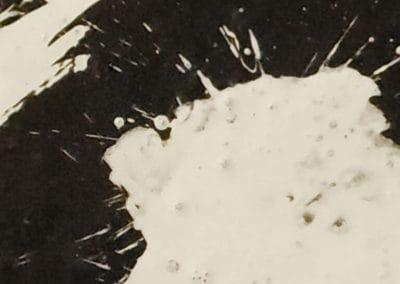 Yin&yang_detail1