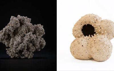 Forma rivelata vs Forma nascosta