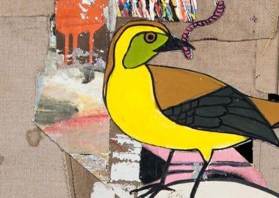 Ornitologia_detail1