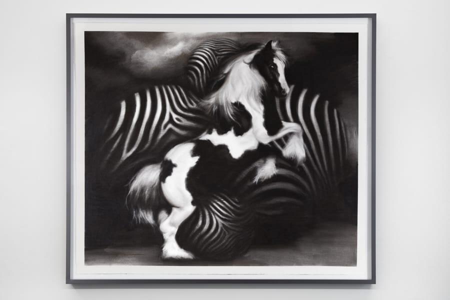 ProjectB, Hugo Wilson, Vanner, 2017, Charcoal on paper, 175x153 cm