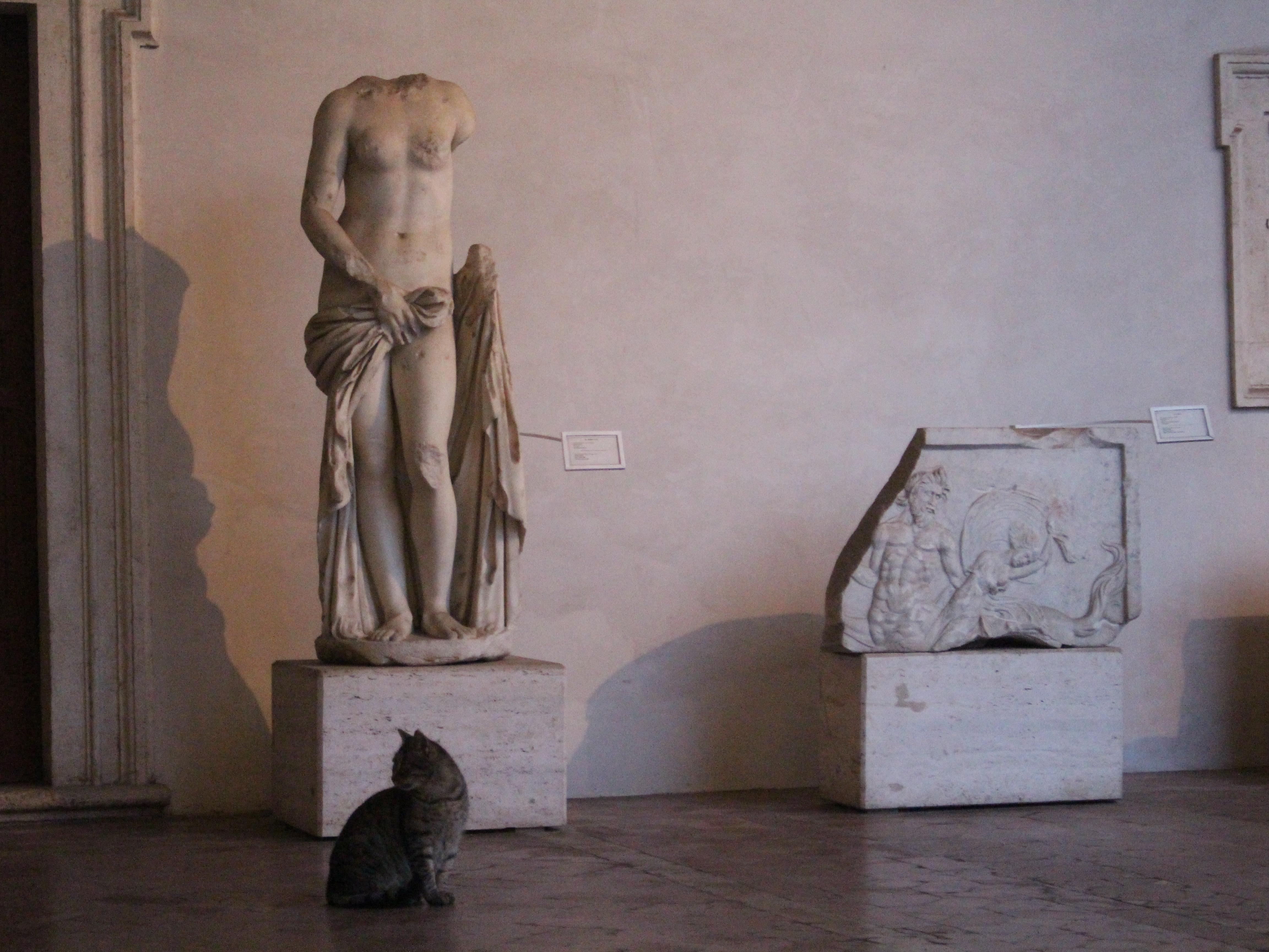 Naomi Kikuchi, Chiostro Michelangiolesco, Terme di Diocleziano, Roma