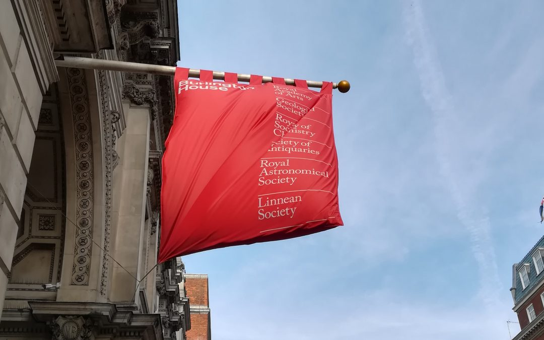 Cortili interni / Royal Academy of Arts